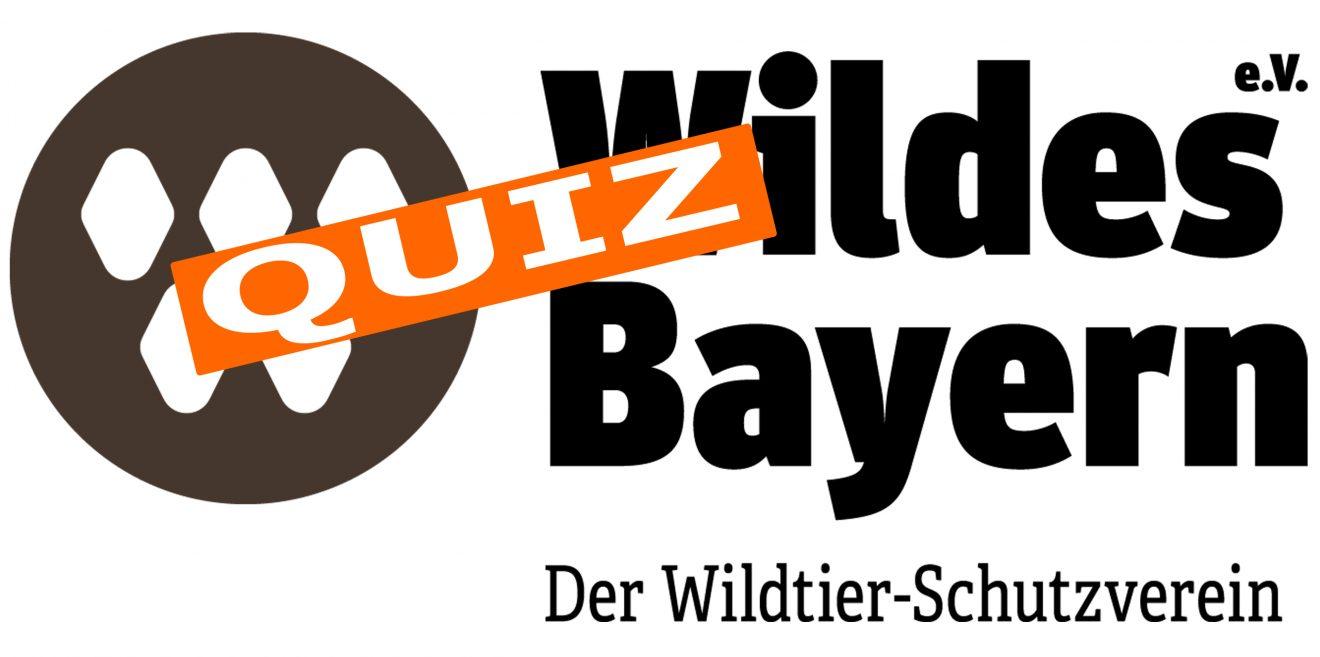 Wildes Bayern Quiz - Jetzt mitraten und gewinnen