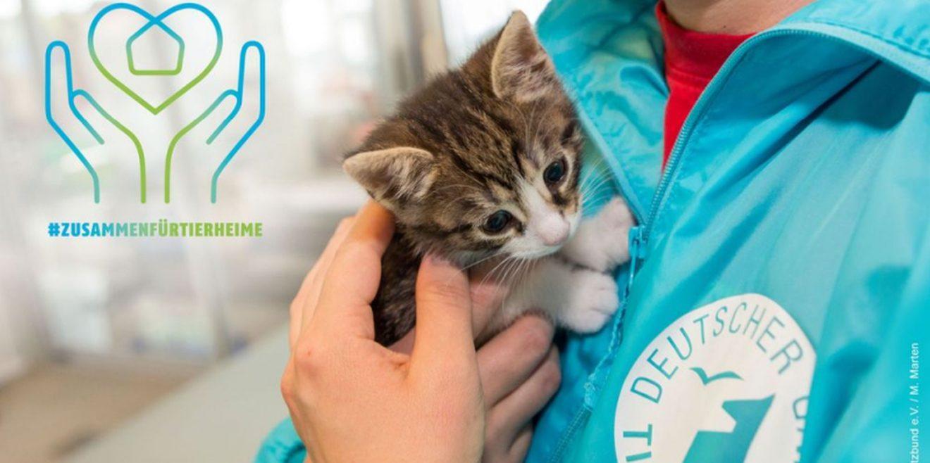 04. Oktober - Heute ist Welttierschutztag