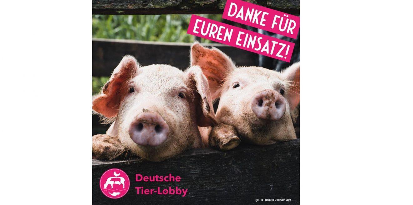 #LasstdieSauraus - Update und Aktionstag am 17. Oktober 2020