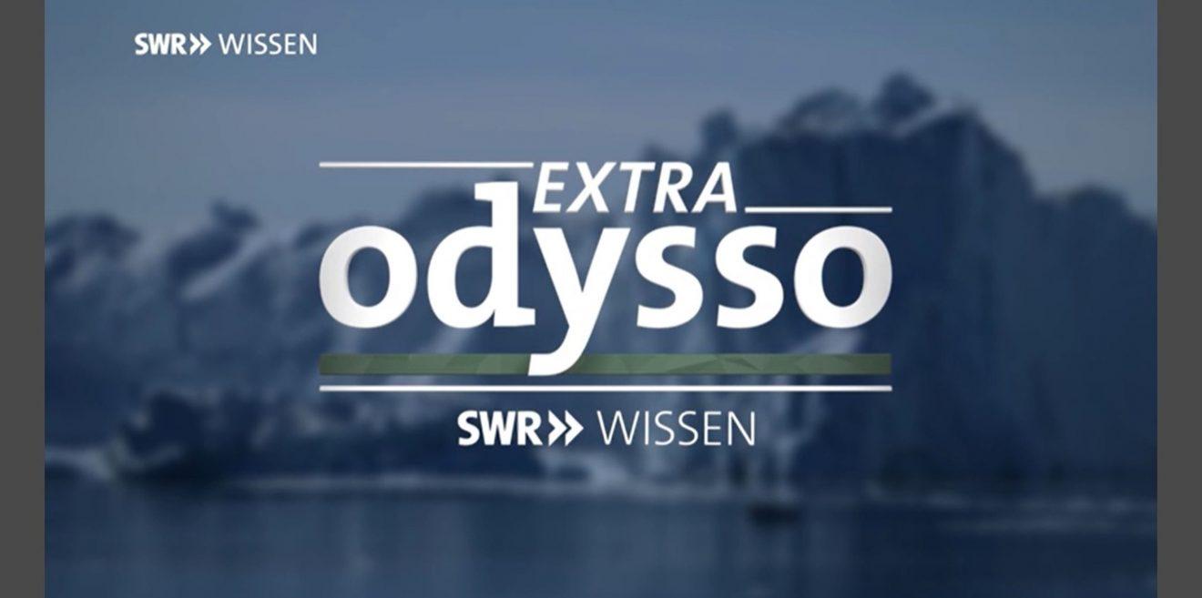 Ein bisschen mehr Respekt! Das Haselhuhn ist in Südwest Deutschland ausgestorben