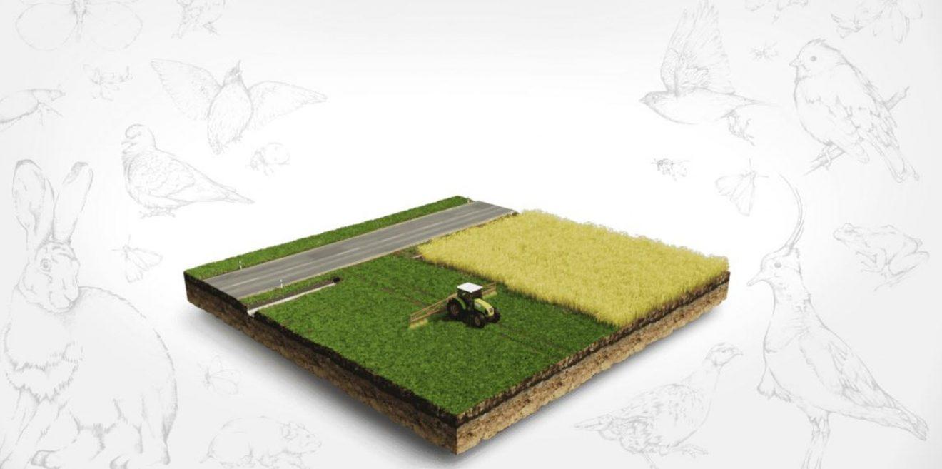 Biodiversität und Agrarlandschaft