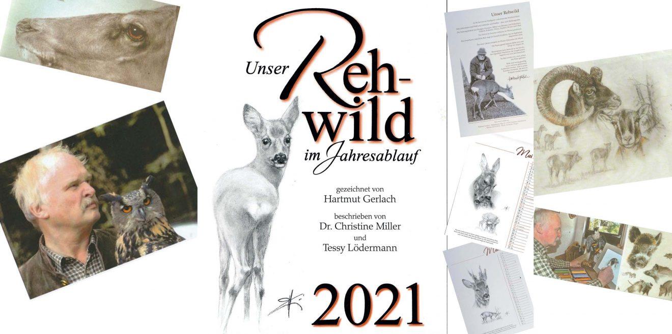 Rehwildkalender von Hartmut Gerlach - Meister der Wildtier-Porträts