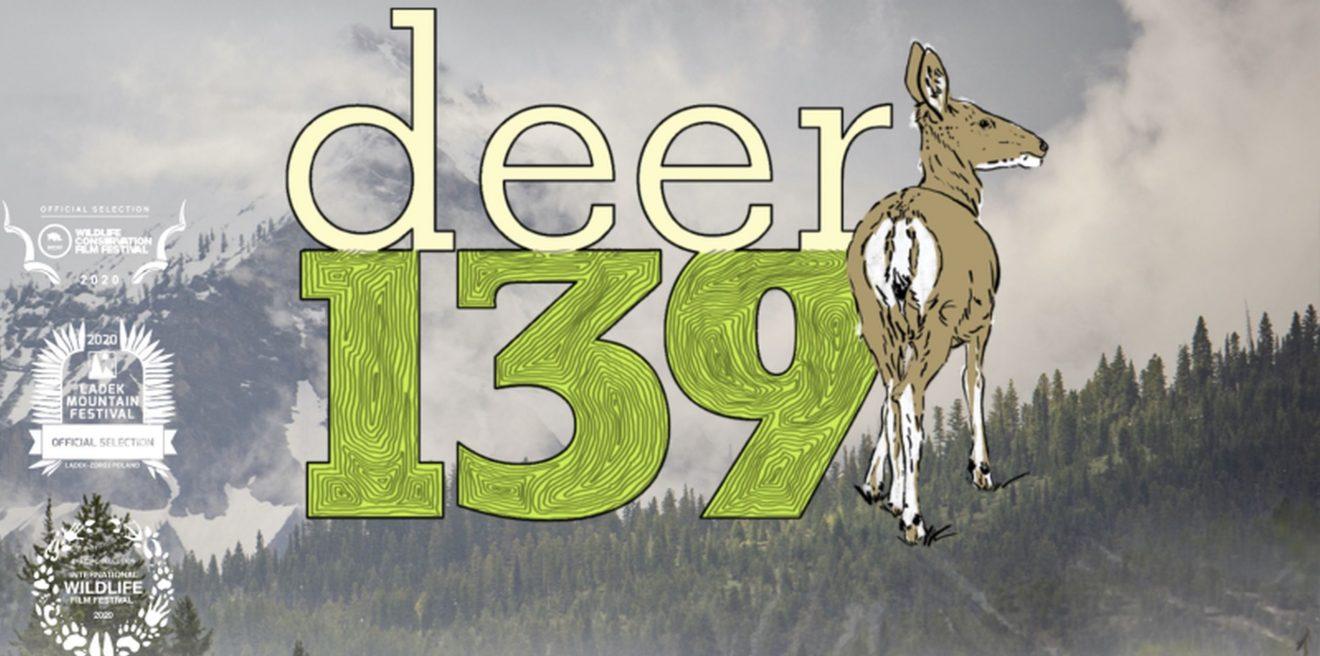 HIRSCH 139 - YouTube Film-Tipp aus Colorado