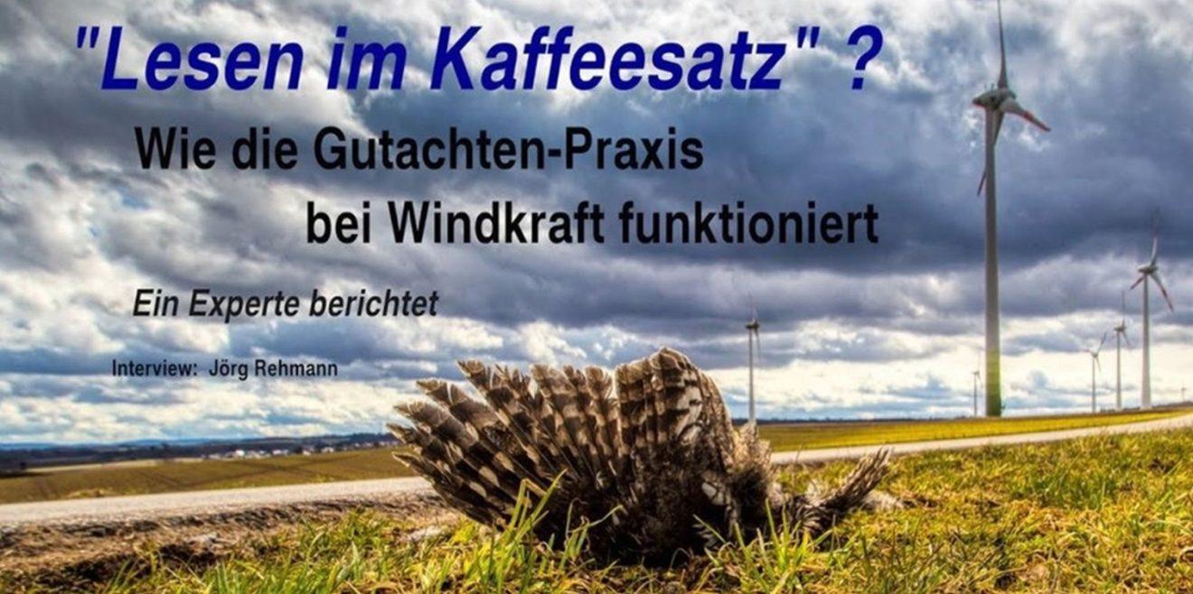 Artenschutz nicht leichtfertig aufgeben! Auch nicht für Windkraft!