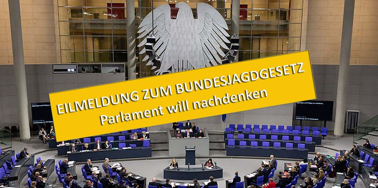 EILMELDUNG - Bundesjagdgesetz – Parlament will nachdenken!