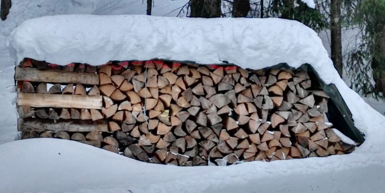 """500 Millionen Euro """"Nachhaltigkeitsprämie"""" - """"Konjunkturhilfen für die Forstwirtschaft""""?"""