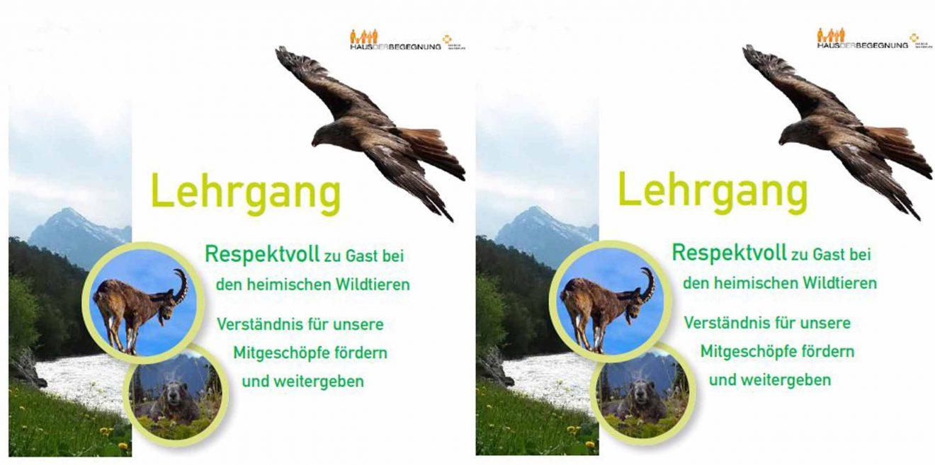Lehrgang - Respektvoll zu Gast bei den heimischen Wildtieren