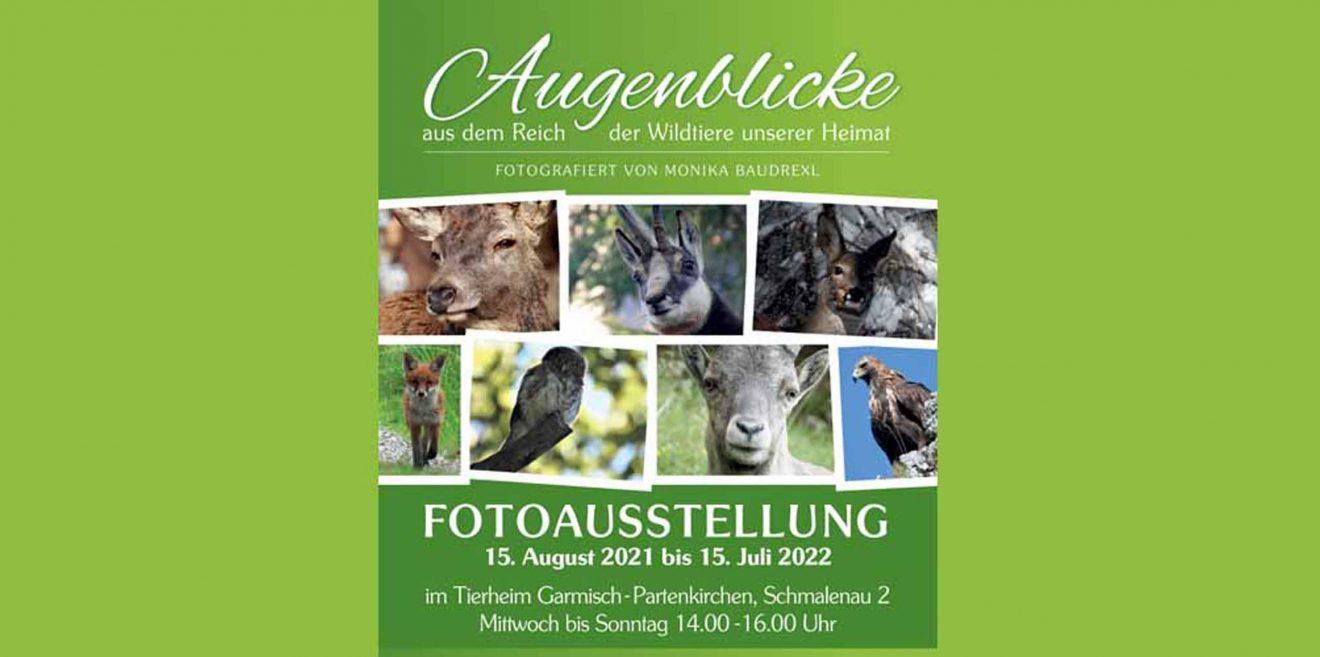 (c)Wildes Bayern - Fotoausstellung Monika Baudrexl Tierheim Garmisch